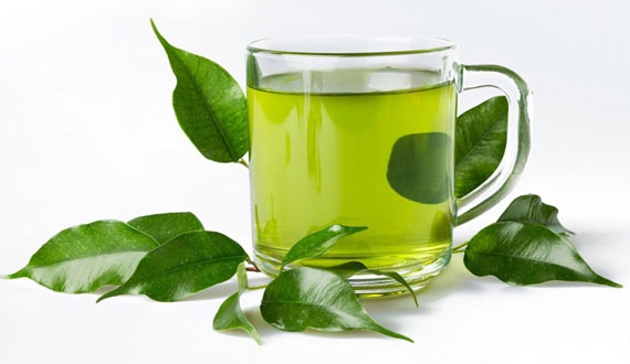 Green Tea For Hair Fall